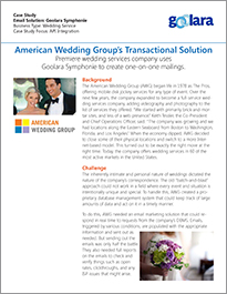 American Wedding Group Case Study